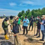 BPN, Dinas Pertanahan Dan Dinas Perikanan Dan Kelautan Aceh Timur Tinjau Calon Lokasi Pembibitan Udang Vaname di Desa Kuala Parek, Kec. Sungai Raya