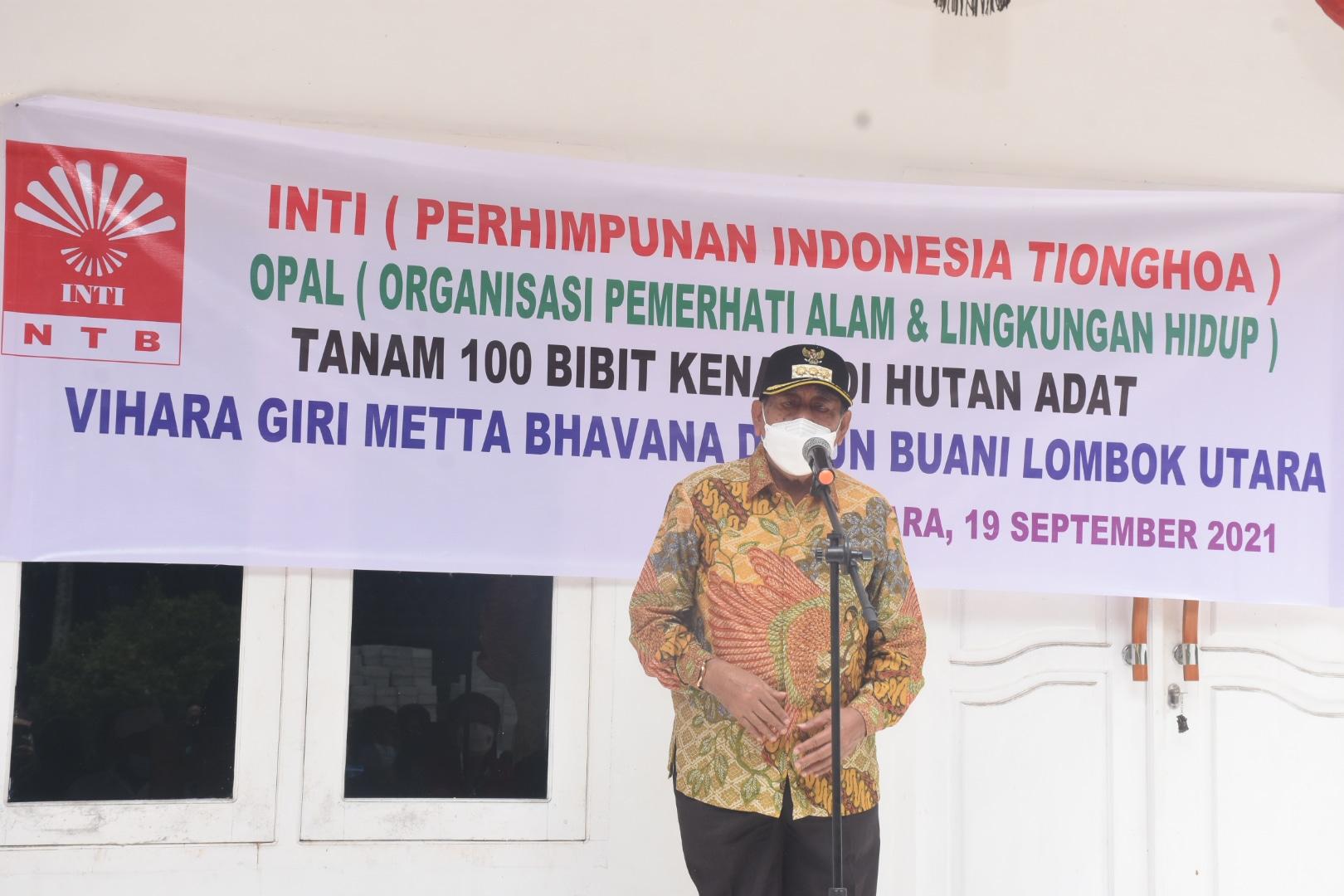 *Bupati Lombok Utara Tanam Bibit Pohon Kenari di Pawang Adat Buani*